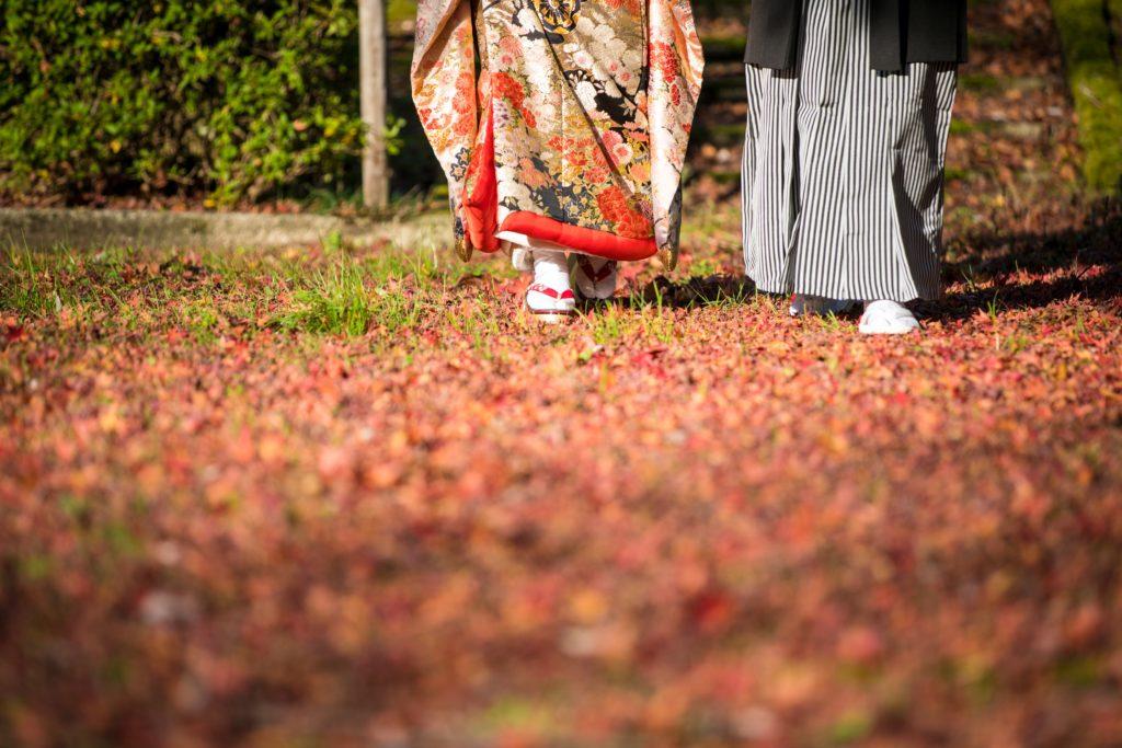 紅葉の絨毯を歩く二人